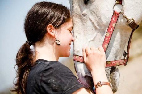 Pferdefotografie NRW, Pferdepension Spitzbarth