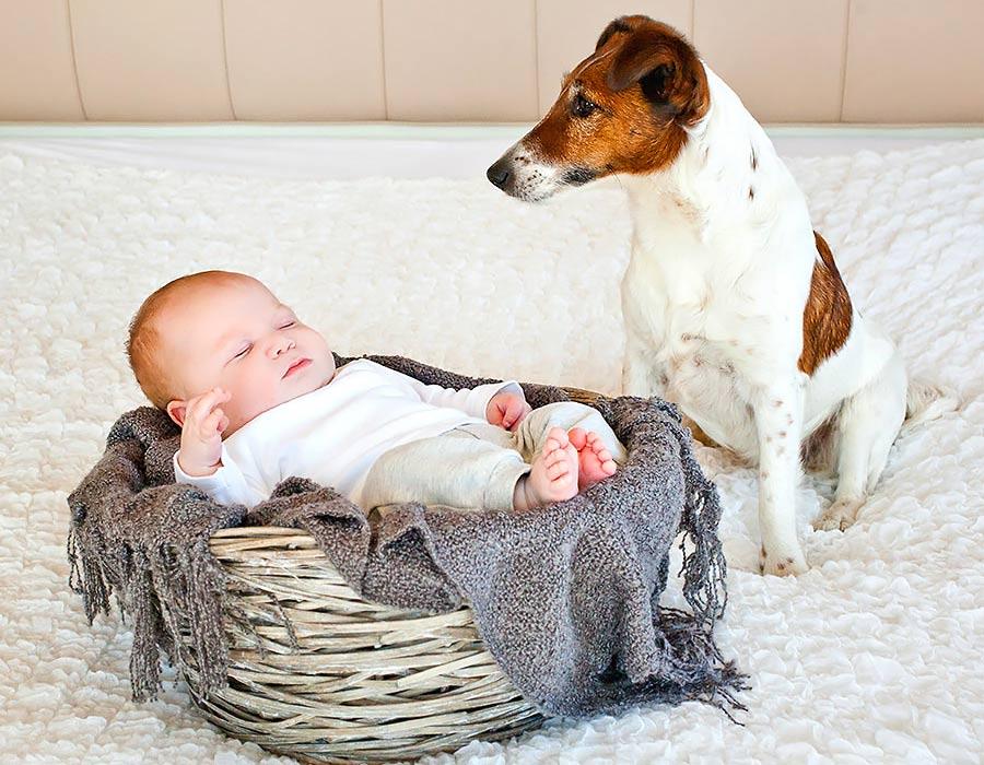 Neugeborenen Fotografie Hannes