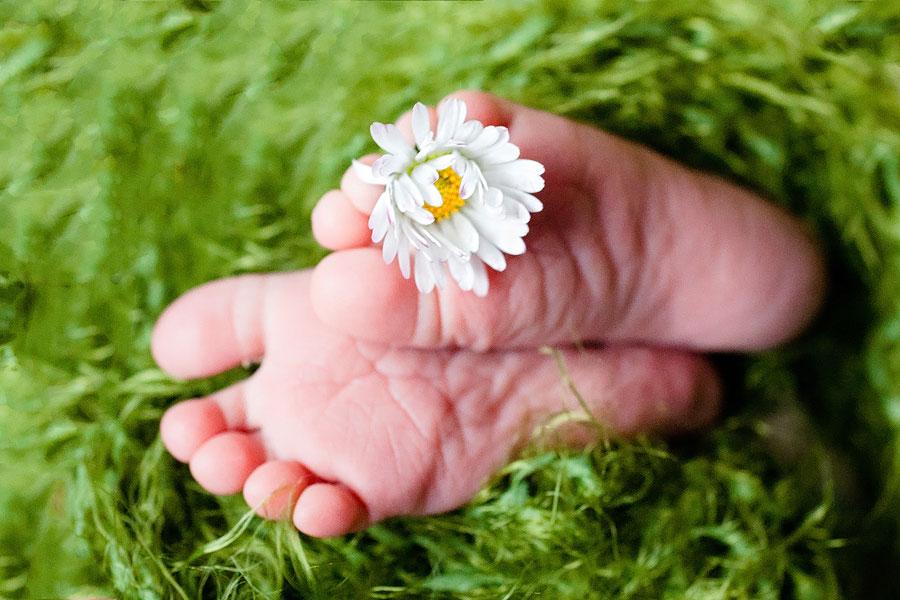Babyfüße mit Blume