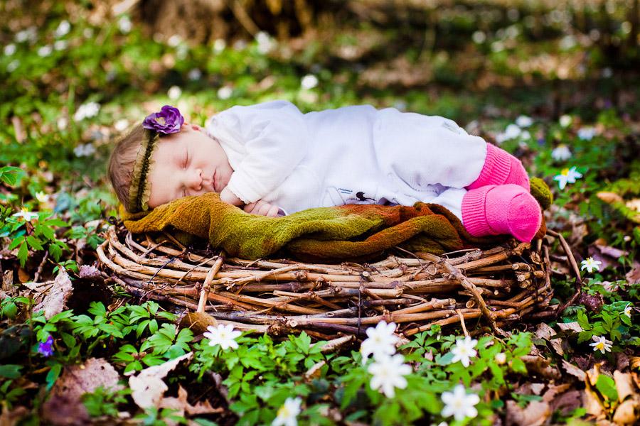 Baby auf der Frühlingswiese
