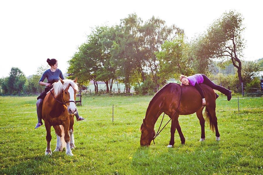 Pferdefotografie in Paderborn