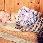niveauvolle Babyfotografie