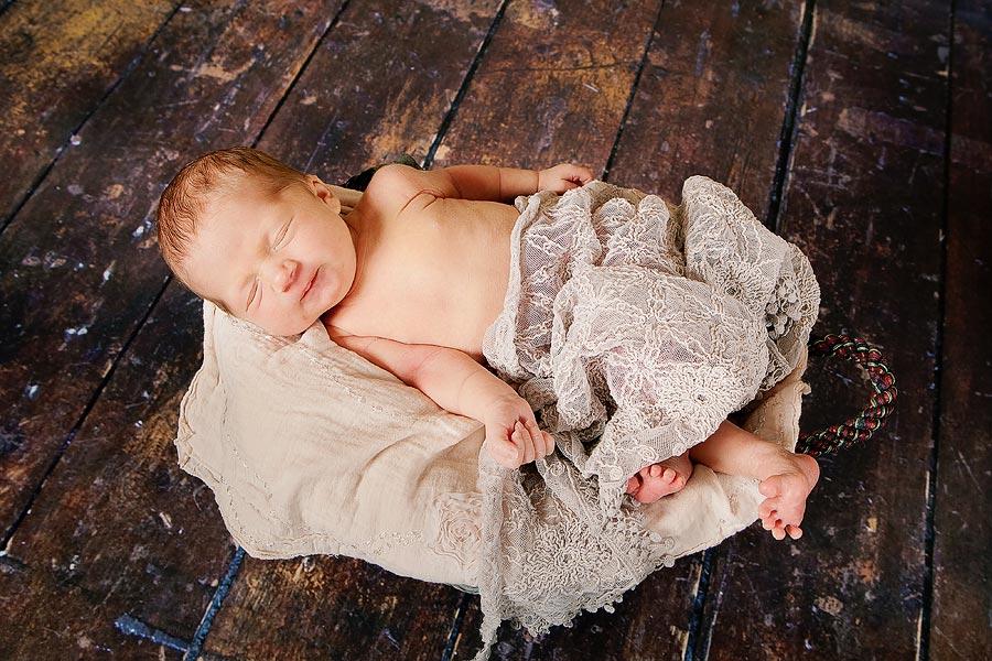 Fotos von Neugeborenen owl