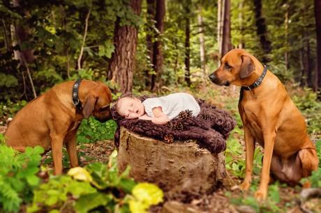Neugeborenenfotografie in der Natur