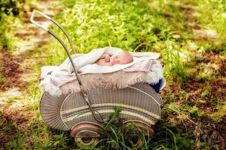 Babyfotos in der natur