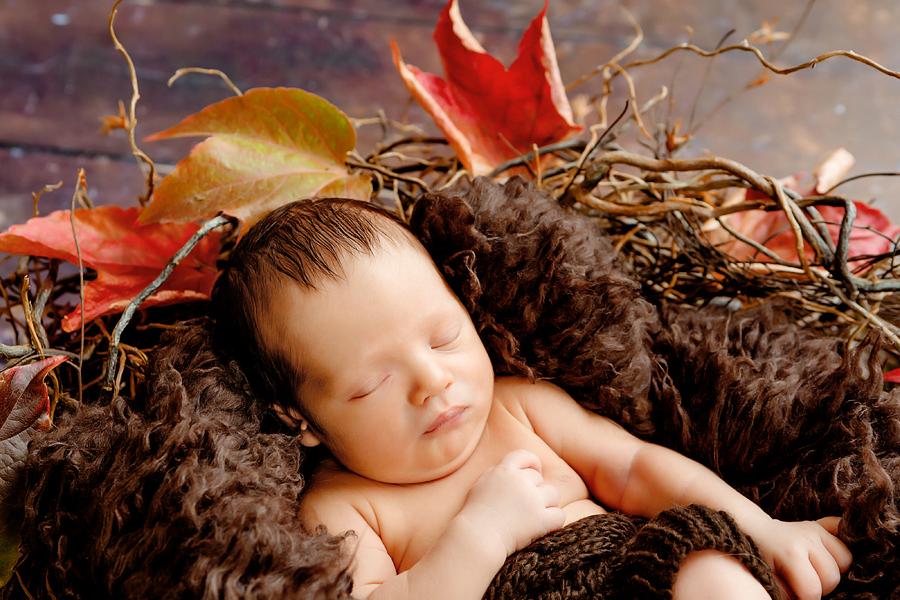 babyfotograf ann geddes neugeborenenfotos familienfotos fotograf paderborn