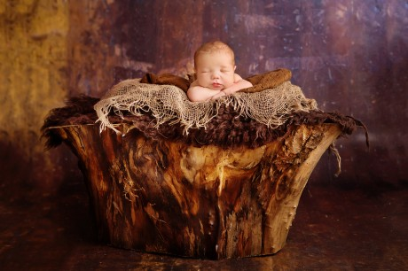 Ann Geddes Neugeborenenshooting