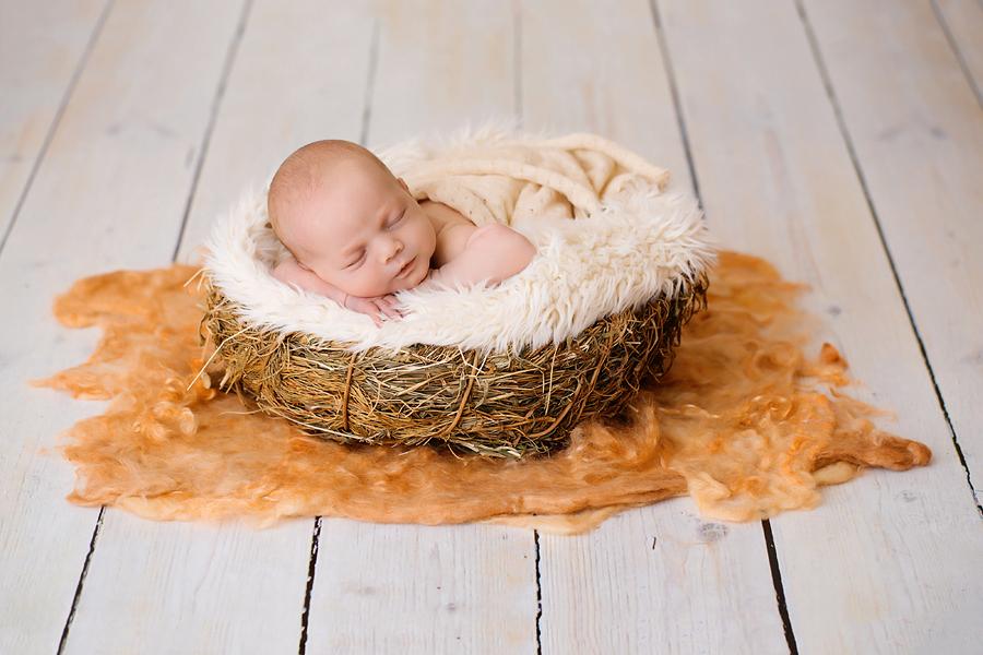 Neugeborenen-Fotoshooting-Ann-Geddes-Wynn Photodesign-Hannah-3