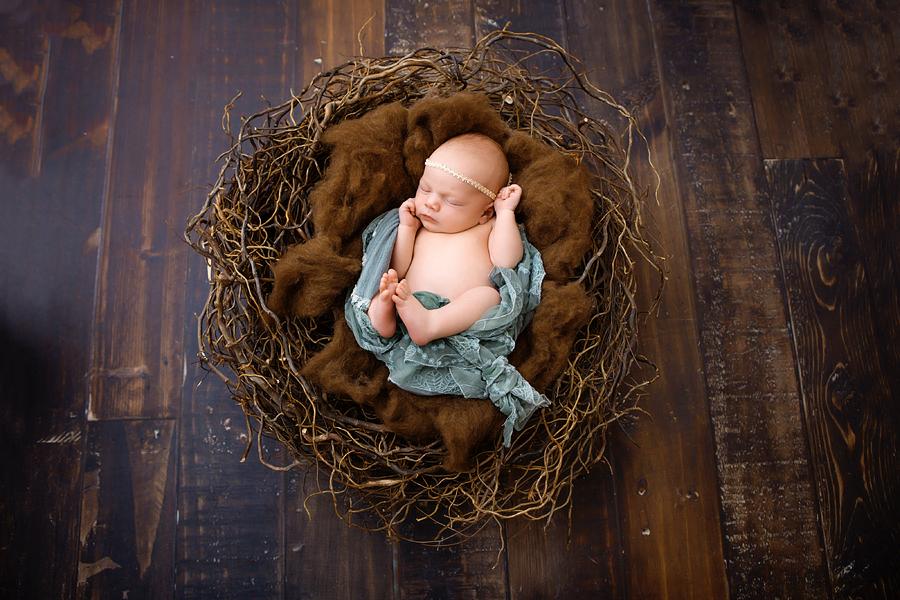 Neugeborenen-Fotoshooting-Ann-Geddes-Wynn Photodesign-Hannah-9