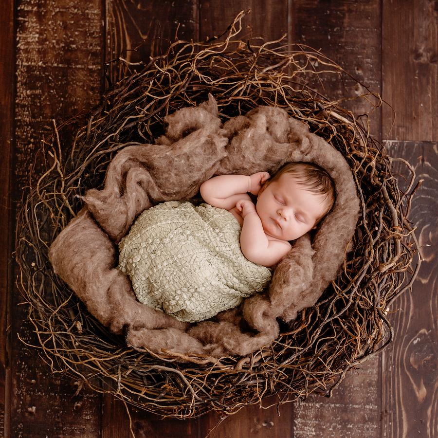 Babyfotograf paderborn neugeboren babyshooting negeborenenshooting paderborn Elisabeth-4