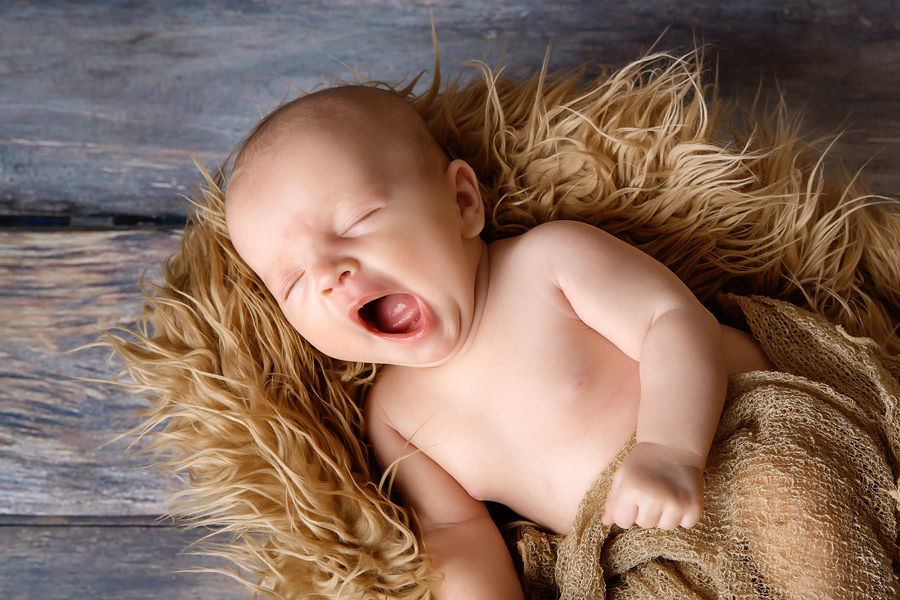 babyfotograf paderborn babyshooting paderborn wynn photodesign alexa neugeborenenfotograf-12