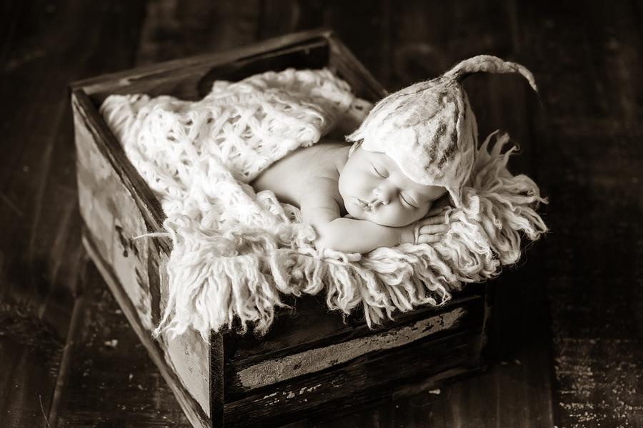 neugeborenenfotos babyfoto paderborn baby fotoshooting paderborn wynn photodesign mathilda babyfotograf-7