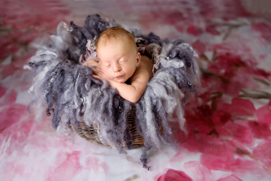 baby fotoshooting paderborn, neugeborenenfotograf bielefeld, herle-7