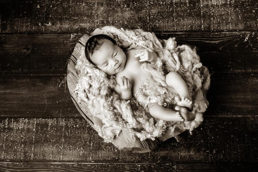 Babyfotoshooting Neugeborenenfotos Babyfotograf Paderborn Bilder vom Neugeborenen Fotostudio natürliche Babyfotos Ann Geddes Wynn Photodesign-11