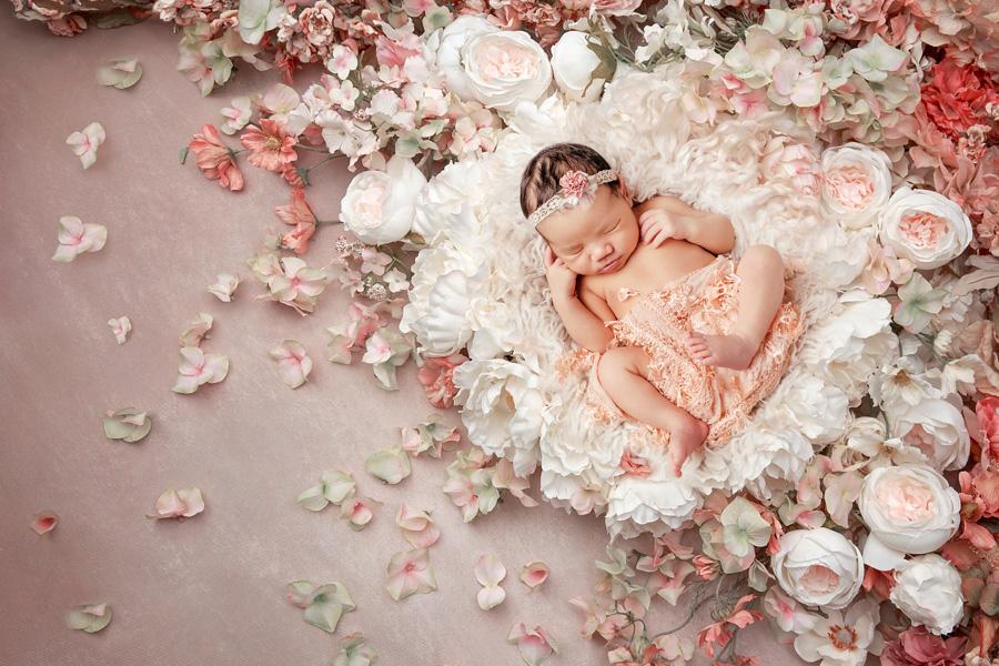 Babyfotoshooting Neugeborenenfotos Babyfotograf Paderborn Bilder vom Neugeborenen Fotostudio natürliche Babyfotos Ann Geddes Wynn Photodesign-13