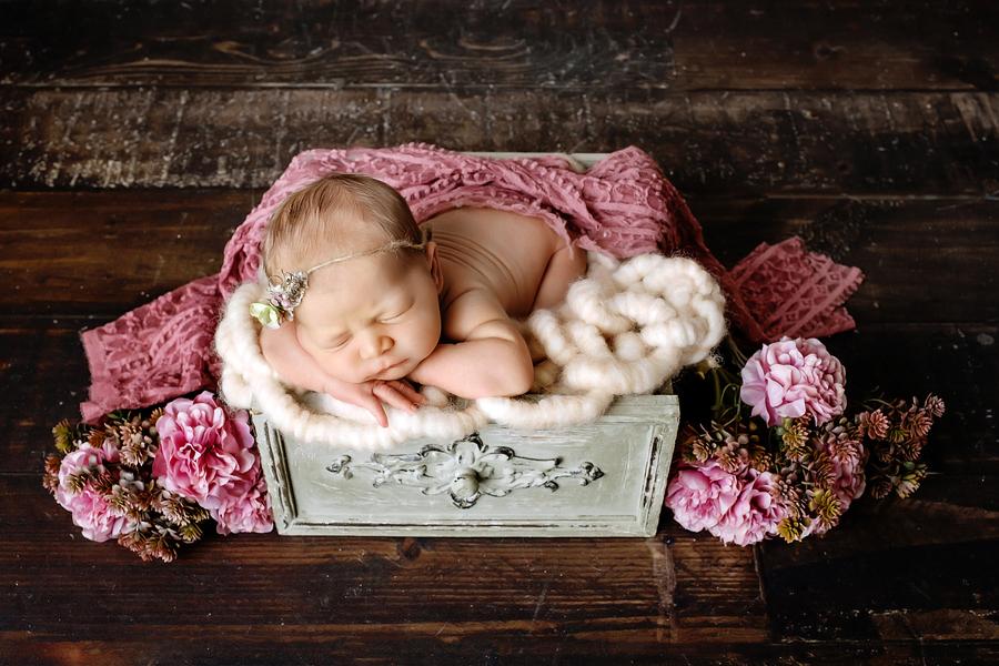 babyfotograf bielefeld