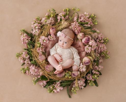 neugeborenenbilder fotoshooting