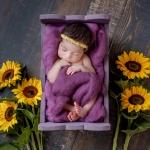 babyfotoshooting paderborn