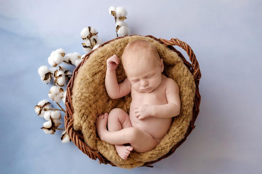 Babyfotograf Paderborn, Neugeborenenfotos Bielefeld, Babyfotos Bielefeld